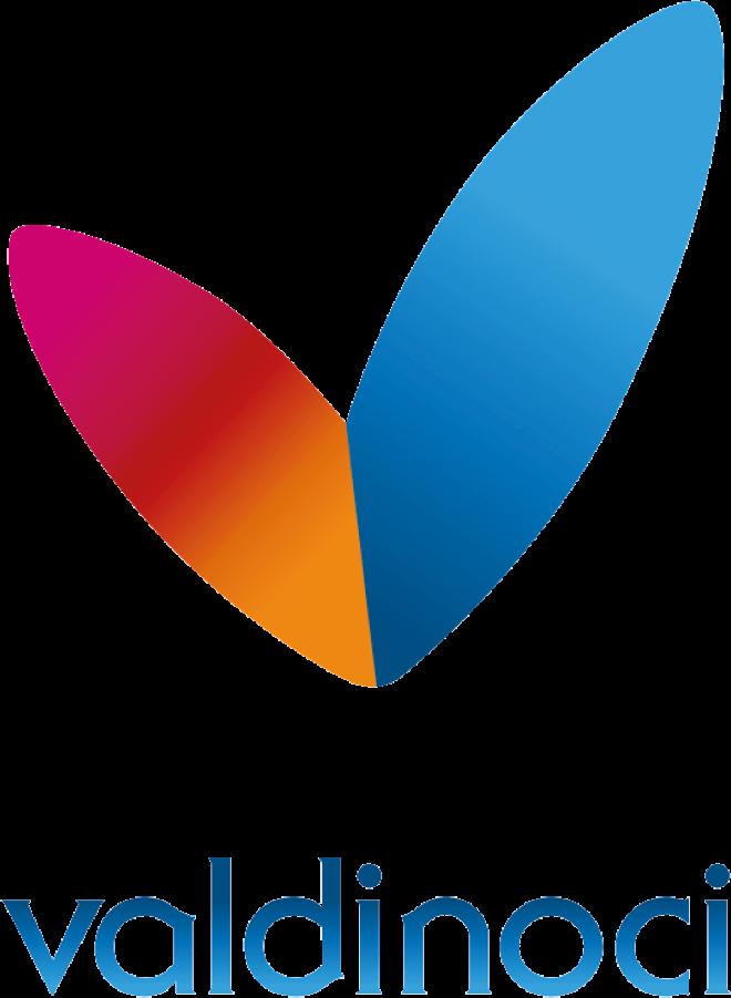 Valdinoci Logo - Ideandum