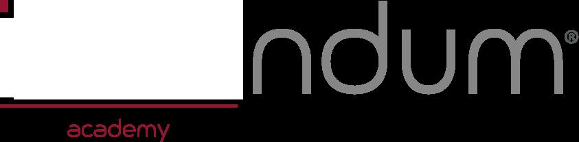 logo ideandum academy
